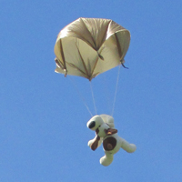 Photograph of a teddy parachuting